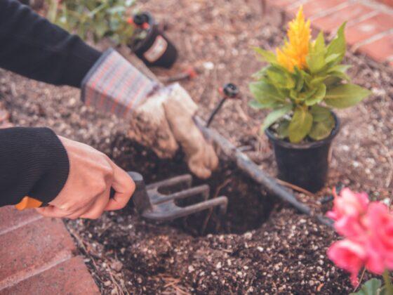 Kompletujemy narzędzia do domu i ogrodu 6