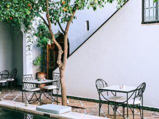 Stolik ogrodowy. Jaki stół ogrodowy spełnia oczekiwania? 16