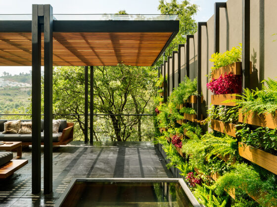 Ogród wertykalny w dżungli miejskiej 2