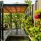 Ogród wertykalny w dżungli miejskiej