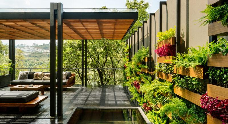 Ogród wertykalny w dżungli miejskiej 1