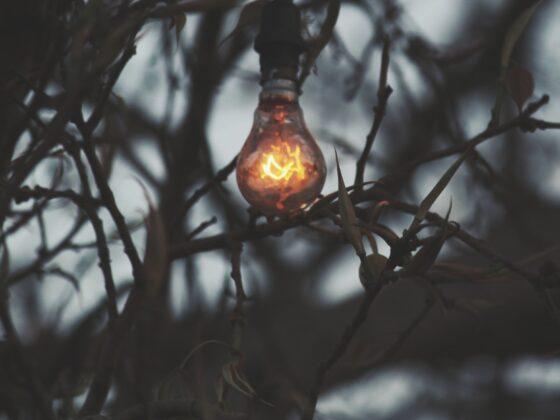 Nowoczesne oświetlenie ogrodowe - sprawdź najmodniejsze warianty 3