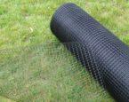 Siatka na krety – sprawdzony sposób na ochronę ogrodu