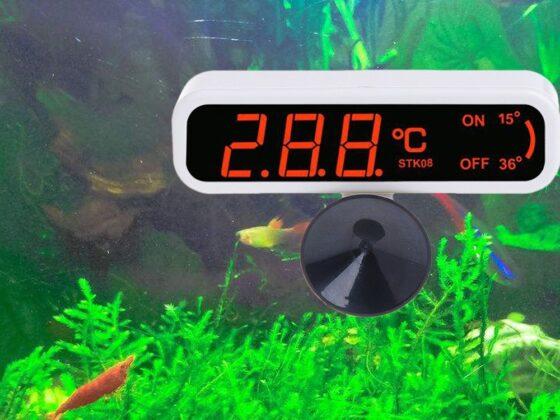 temperatura wody w akwarium