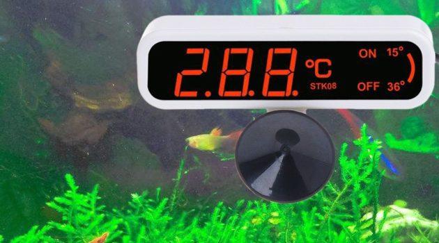 Jaka temperatura wody w akwarium